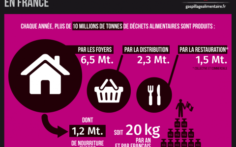 Gaspillage alimentaire en France (alim''agri)